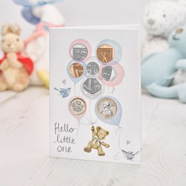 Hello Little One 2020 Baby Journal
