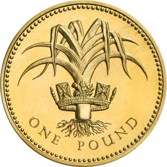 1985 1990 One Pound Coin